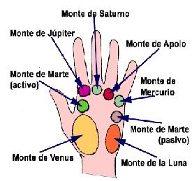 nombre de los dedos statue
